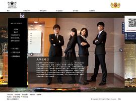 中国领缔国际咨询服务有限公司